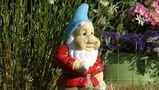 companion photo for Linux garden gets a new GNOME with version 2.28