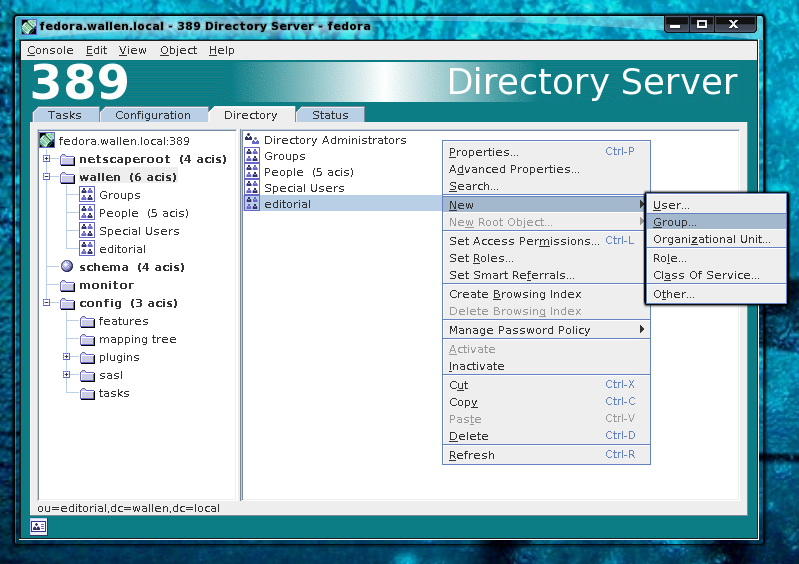 Directory Server manager