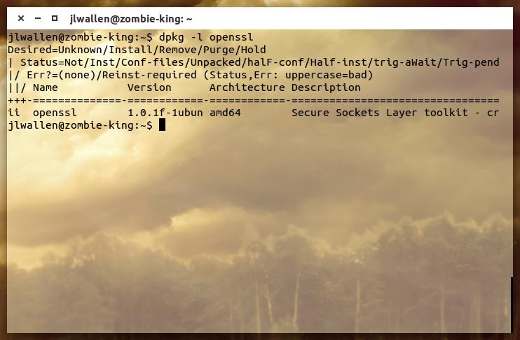 OpenSSL version info