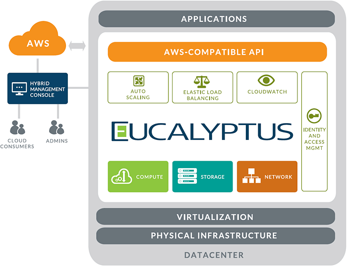 diagram-eucalyptus