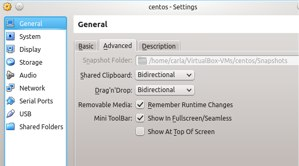 Enable a common clipboard and drag-and-drop.