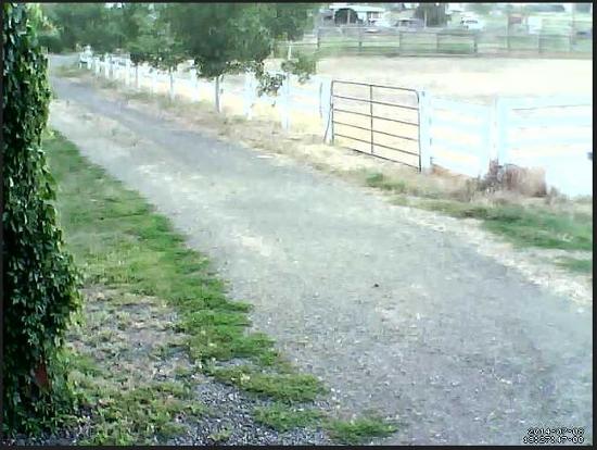 fig3 driveway