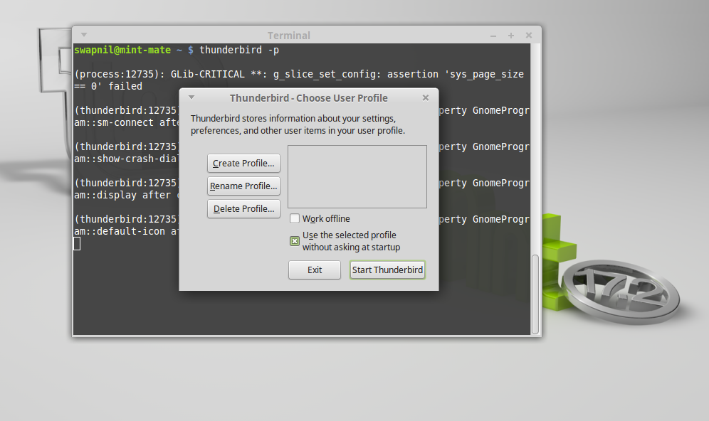 Linux Mint Thunderbird profile window.