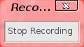 Stop recording window